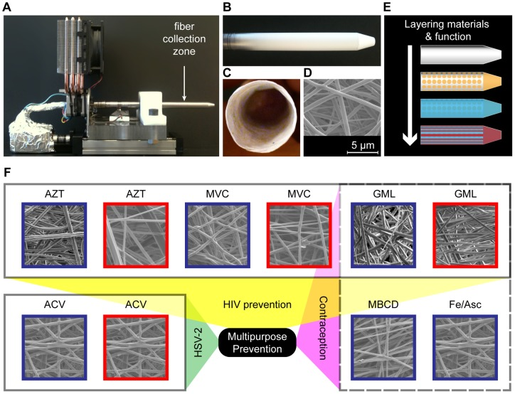 Electrospun fibers incorporate drugs for multipurpose prevention. ( a ) Two-axis mandrel electrospinning rig for fiber collection. ( b ) Controlled fiber deposition along a grounded aluminum collector produces a geometry that may be suitable for vaginal drug delivery. ( c ) Mesh abstracted from mandrel has a hollow interior. ( d ) Fiber meshes have porous microstructure. ( e ) Combining fiber meshes produces a multifunctional material. ( f ) Diverse agents with action against HIV, HSV-2, or sperm are incorporated into blends of PLLA and PEO. PLLA/PEO (30∶70, blue) and PLLA/PEO (70∶30, red); AZT = 1 wt% 3′-azido-3′-deoxythymidine, MVC = 1 wt% maraviroc, ACV = 1 wt% acycloguanosine, GML = 10 wt% glycerol monolaurate, MBCD = 10 wt% methyl-β-cyclodextrin, Fe/Asc = 10 wt% iron (II) D-gluconate with 10 wt% ascorbic acid.