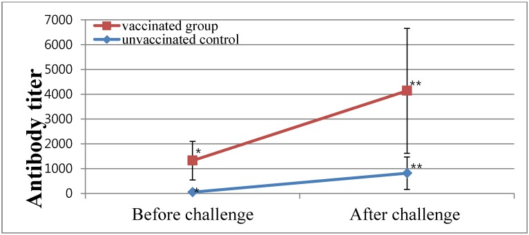 Mean enzyme-linked immunosorbent assay (ELISA) antibody titers before and after challenge in experimental chickens vaccinated with an inactivated IB oil vaccine at 13-week-old and challenged with IBV SNU8067 3 weeks later. The sera were collected at 5 weeks after challenge. The levels of antibody titers between the control and vaccinated groups after vaccination and challenge were significantly different ( P