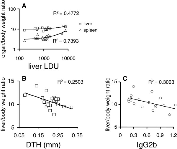 Correlation between the clinical signs of visceral leishmaniasis and the cellular versus antibody responses to leishmanial antigen. Data represented in bivariate graphics: ( A ) the positive correlation between the individual increase of spleen and liver relative weights and the increase in liver parasite load; and ( B ) the negative correlation between the increase in liver relative weight and the decrease in DTH response to leishmanial antigen, and ( C ) the increase in liver relative weight and the decrease in anti-NH36 IgG2b antibody response. The results were expressed on graphs as scattering of individual values. R-squared (R 2 ) (coefficients of determination) estimates are shown on graphs. Trend lines were added.