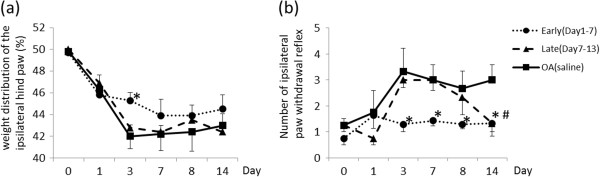 The effect of intra-articular injection of APETx2 on behavior tests. ( a )weight distribution, ( b ) paw withdrawal reflex (same manner as Figure 1 ). Weight distribution was changed significantly at Day3 in early APETx2 administration group. Frequency of paw withdrawal reflex i.e. secondary hyperalgesia reduced with APETx2 injection. The inhibitory effects on secondary hyperalgesia in both early- and late-phase groups were observed at Day14. * p