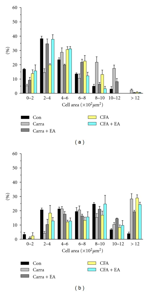 Cell area percentage of TRPV1-immunoreactive neurons in the L3-L5 DRG in mice in control, carrageenan, carrageenan with EA (electroacupuncture), CFA (complete Freund's adjuvant), and CFA with EA (electroacupuncture) treatment. (a) The percentage of TRPV1-positive neurons from lumbar DRGs that belonged to corresponding cell area was presented. At day 4, TRPV1-positive neurons were dominantly observed in small neurons (cell area