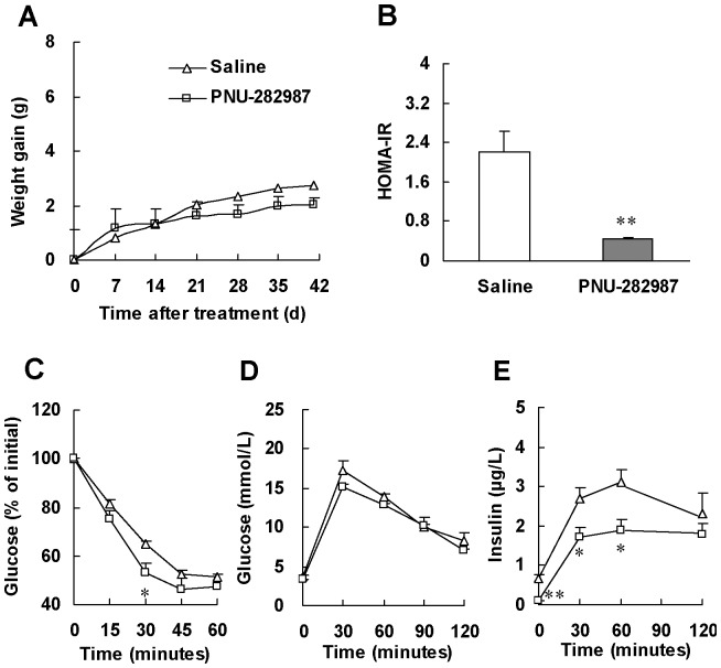 Selective α7-nAChR agonist, PNU-282987, enhances insulin sensitivity in normal mice. (A) Weight gain in mice during PNU-282987 treatment. At the end of PNU-282987 treatment, (B) HOMA-IR, (C) insulin tolerance test (ITT) and (D, E) glucose tolerance test (GTT) were performed. ITT was performed in mice 6 h after food removal with insulin challenge at 0.55 IU/kg of body weight (i.p.). GTT was performed in overnight fasted mice with glucose challenge at 2.0 g/kg of body weight (i.p.). Data are means ± SE (n = 5–6). * P