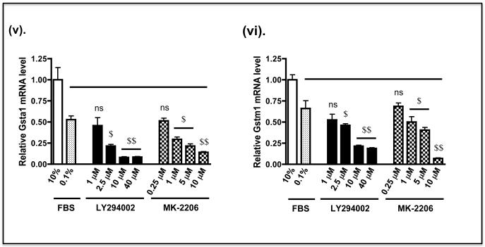 Nrf2 is down-regulated by prevention of the inhibitory phosphorylation of GSK-3 A) COS1 cells were transfected with a pcDNA3.1 expression vector for a V5-tagged fusion protein comprising Neh6(LacZ)-V5 or Neh6(LacZ)-V5 bearing individual deletion of the SDSGIS 338 , SDSEME 370 and DSAPGS 378 from the Neh6 domain for 24 h. Twenty-four h later the cells were serum depleted by transfer to DMEM containing 0.1% (v/v) FBS for a further 16 h before the cells were treated with either 10 μM LY294002, 5 μM MK-2206 or with vehicle (0.1% (v/v) DMSO) in media containing 0.1% (w/v) FBS for 8 h. Whole-cell lysates were harvested and proteins were resolved in SDS-PAGE and gels were immuno-blotted with the indicated antibodies. The antibody that recognised phospho-GSK-3β (Ser-9) was from Abcam (ab30619). Gapdh was used as an internal control. B) Keap1 −/− MEFs were seeded in 60 mm petri-dishes in DMEM containing 10% FBS 24 h prior to serum depletion (0.1% FBS) for a further 16 h. Thereafter, the cells were treated for 8 h with 1.0, 2.5, 10 or 40 μM LY294002 or 0.25, 1.0, 5.0 or 10 μM MK-2206, all of which were dissolved in DMSO to a final concentration of 0.1% (by vol), in media containing 0.1% (w/v) FBS; 0.1% (v/v) DMSO was used as vehicle control. Whole-cell lysates were harvested and proteins were resolved in SDS-PAGE and gels were immunoblotted with the indicated antibodies. Gapdh was used as a sample loading control. C) Keap1 −/− MEFs were grown in 60 mm petri-dishes in DMEM containing 10% FBS 24 h prior to serum depletion (0.1% FBS) for 16 h, as described in panel B above. The fibroblasts were then treated with LY294002 or MK-2206 in medium containing 0.1% FBS, at the doses indicated, for 2 h before they were transferred to fresh medium containing 0.1% FBS for 6 h. Thereafter, the fibroblasts were harvested, total RNA extracted, and mRNA for Nqo1, Hmox1, Gclc, Gclm, Gsta1 and Gstm1 measured by TaqMan chemistry as described by Higgins et al ( 61 ). The solid horizontal bar indic