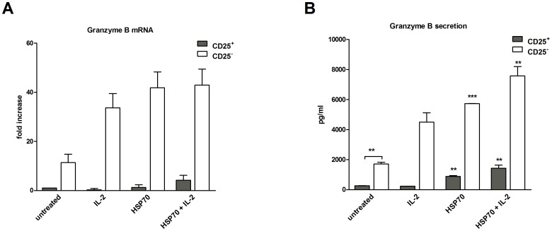 Secretion of cytotoxic effector molecule granzyme B of both CD4 + CD25 + and CD4 + CD25 − T-cell subsets is target-independent enhanced by HSP70. ( A ) Granzyme B mRNA levels in CD4 + CD25 + T cells or independently stimulated CD4 + CD25 − T cells were assessed by real-time PCR after 48 h of stimulation on anti-CD3 (OKT3, 1 µg/ml) coated plates in serum-free medium. Analysis was performed for comparison between the different CD4 + CD25 + and CD4 + CD25 − T-cell subsets. ( B ) Secretion of granzyme B was assessed by ELISA. Data from four independent experiments (mRNA) and two independent experiments (protein levels), expressed as mean ± SD. Comparison between groups was performed using t-tests. Statistically significant differences are indicated with asterisks (* p