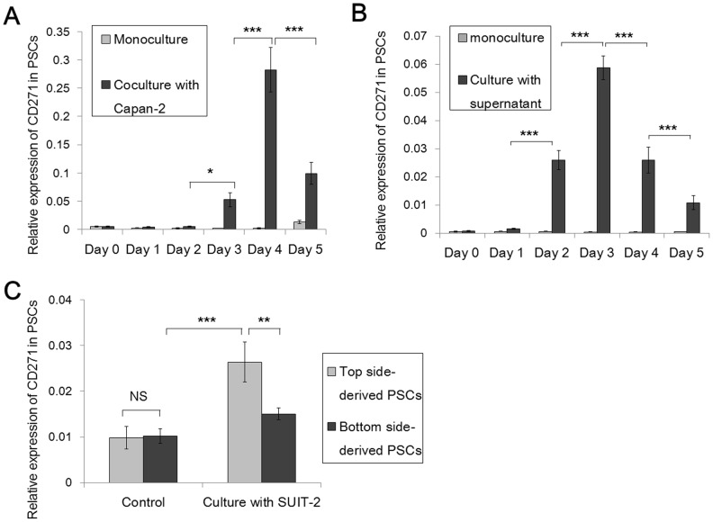 CD271 expression in pancreatic stellate cells (PSCs) decreases after long-term interactions with pancreatic cancer cells. (A) Real-time <t>qRT-PCR</t> analyses showed that the levels of CD271 mRNA expression in PSCs in coculture with pancreatic cancer cells start to increase on day 3 (p = 0.0249), are highest on day 4 (p