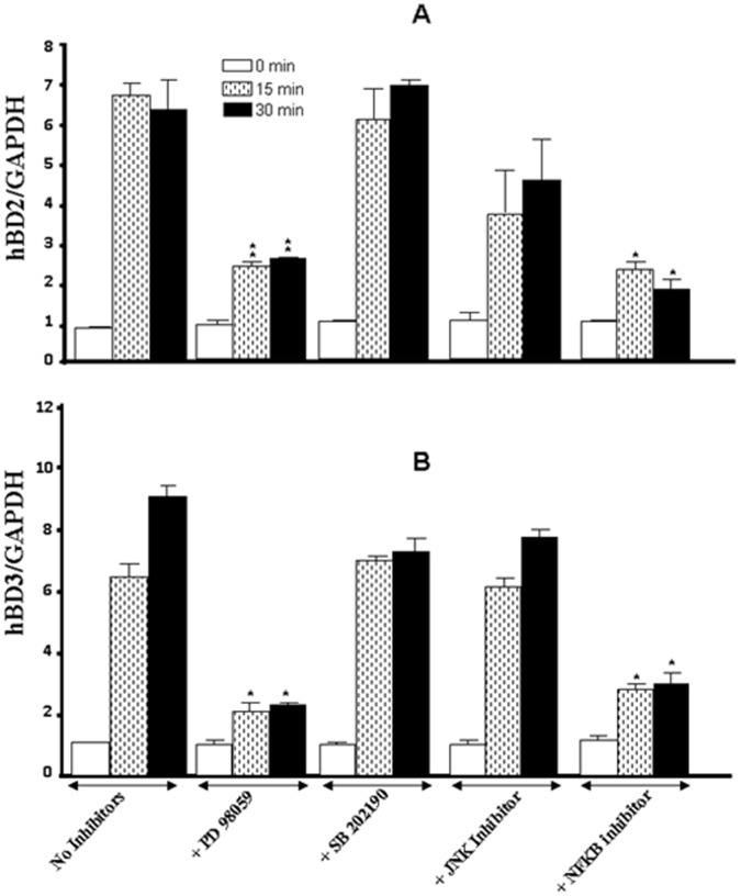 Whole cigarette smoke promoted human β-defensin-2 and -3 expression through the ERK1/2 MAP kinase and NFκB signaling pathways. Confluent (80%) gingival epithelial cell cultures were incubated with 10 µM of ERK inhibitor (PD98059), 10 µM of p38 inhibitor (SB202190), 10 µM of JNK inhibitor <t>(SP600125),</t> or 10 µM of NFκB inhibitor (IKK-2) for 45 min before exposure to cigarette smoke for 15 or 30 min. Six hours later, total RNA was extracted, and HBD gene expression was analyzed by qRT-PCR (n = 6). *, p