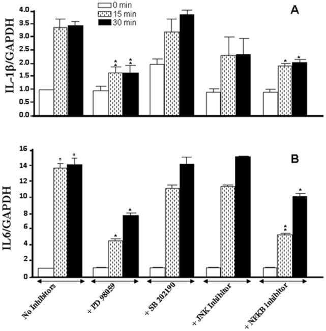 Whole cigarette smoke promoted IL-1β and IL-6 expression through the ERK1/2 and NFκB signaling pathways. Confluent (80%) gingival epithelial cell cultures were incubated with 10 µM of ERK inhibitor (PD98059), 10 µM of p38 inhibitor (SB202190), 10 µM of JNK inhibitor (SP600125), or 10 µM of NFκB inhibitor (IKK-2) for 45 min before exposure to cigarette smoke for 15 or 30 min. Six hours later, total RNA was extracted, and cytokine gene expression was analyzed by qRT-PCR (n = 6). *, p