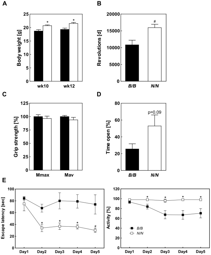 Characterization of the body weight and behavior of RCS-IX. (A) Body weight, (B) running wheel activity, (C) grip strength, and (D) preference on the O-Maze were compared between B/B and N/N allele carriers. (E) Spatial learning was assessed by the Morris Water Maze test and escape latency (left panel) and activity (right panel) were determined during acquisition (day 1–3) and reversal (day 4–5). For testing the subcongenic line RCS-IX 5 females of B/B and 7 females of N/N genotype were used. (#p