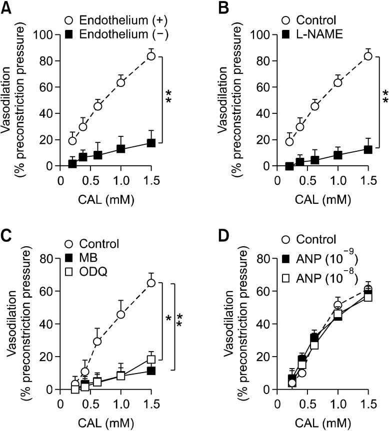 Endothelium and NO dependency of vasodilatory effects of CAL on the PE-induced contraction of rat thoracic aorta. (A) Vasodilatory effect of CAL in the presence (○) and absence (■) of endothelium in rat aorta. (B) NO-dependent vasodilatory effect of CAL in response to pretreatment with N G -nitro- L -arginine methyl ester ( L -NAME; 10 -4  M; ■). (C) sGC-dependent vasodilatory effect of CAL in response to pretreatment with methylene blue (MB; 10 -5  M; ■) and 1 H-[1,2,4]-oxadiazolole-[4,3-a] quinoxalin-10-one (ODQ; 10 -6  M; □). (D) pGC-dependent vasodilatory effect of CAL in response to pretreatment with atrial natriuretic peptide (ANP; 10 -8  and 10 -9  M). Relaxation values are indicated as the percentage of decrease in maximal tension in response to PE. Each marker represents the mean ± S.D. from at least three independent experiments.  * P