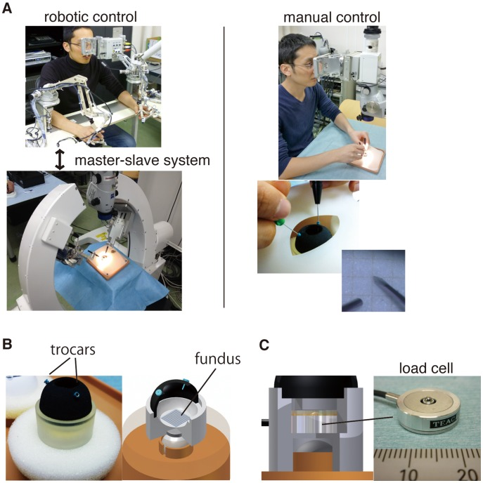 Robotic/manual control of a vitreoretinal surgical instrument and an in-vitro eye model constructed for the present study. (A) Test procedures were conducted manually and by telerobotic system using the same visual system. A <t>25G</t> v-lance was introduced into the eye through trocar cannula. (B) A piece of graph paper was attached on the fundus that provided targeting points for the test procedures. The eye model was loosely fixed by a magnet to mimic the eye movement during surgery. (C) In the test procedure 3 to measure the foce applied on the fundus, a load cell was placed beneath the graph paper of the fundus.