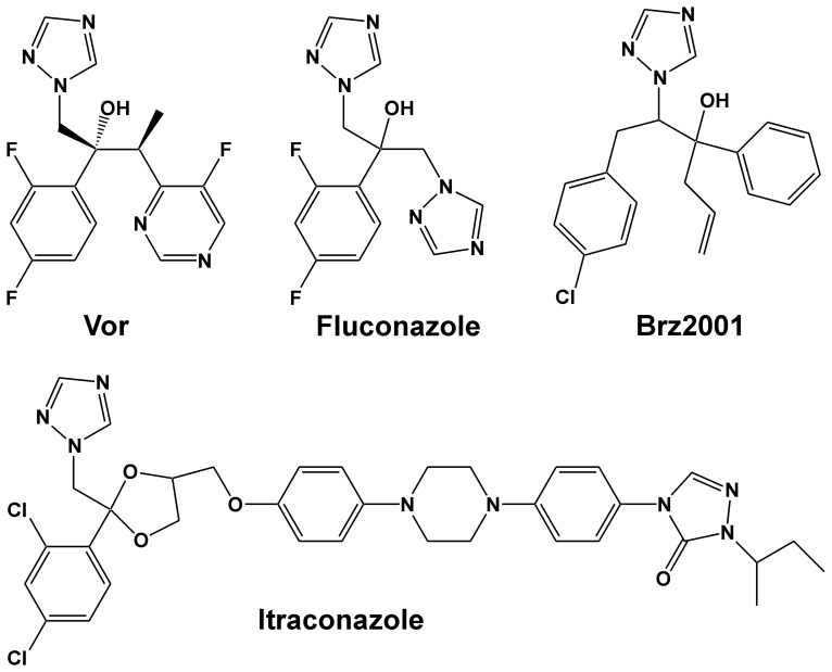 Structures of the triazoles voriconazole, <t>fluconazole</t> and itraconazole and the BR biosynthesis inhibitor Brz2001.