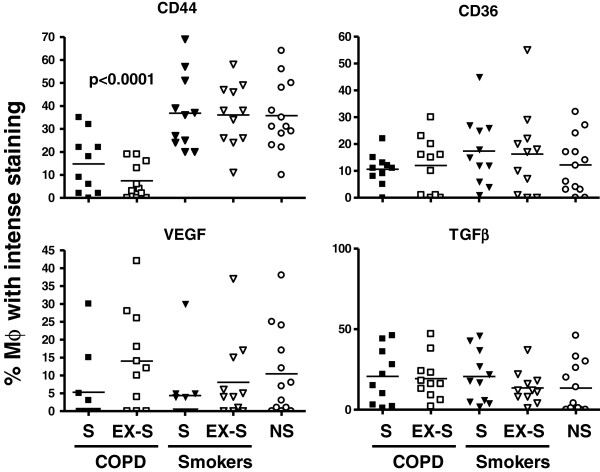 Individual and mean (bars) values of the proportion of macrophages with intense staining for CD44 , CD36, VEGF and TGFβ in patients with COPD, smokers with normal spirometry and non-smokers. (S = current smokers; EX-S = former smokers; NS = non-smokers). For further explanations, see text.