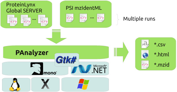 Block diagram for running PAnalyzer. PAnalyzer can read one or more <t>ProteinLynx</t> Global Server output files and mzIdentML files and exports the reorganized protein list to CSV, HTML and mzIdentML. The tool runs in every platform where a .NET version 4 compliant CLR is available.