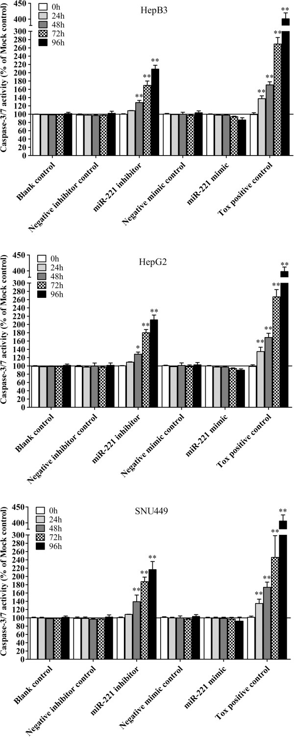 Effect of miR-221 on caspase-3/7 activity of HCC cells. HCC cells were treated the same as described in Figure 5 and the caspase-3/7 activity was detected using Apo-ONE Homogeneous Caspase-3/7 Assay. * P