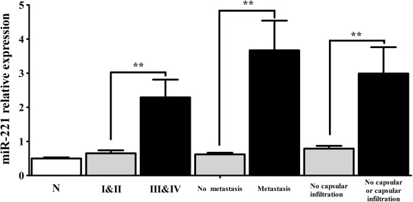 Relationship of miR-221 relative expression and HCC clinicopathological features. MiR-221 levels accessed by real time RT-qPCR in HCCs and their adjacent noncancerous liver tissues. N: noncancerous liver tissues. I II: clinical TNM stage I and II, III IV: stage III and IV. ** P