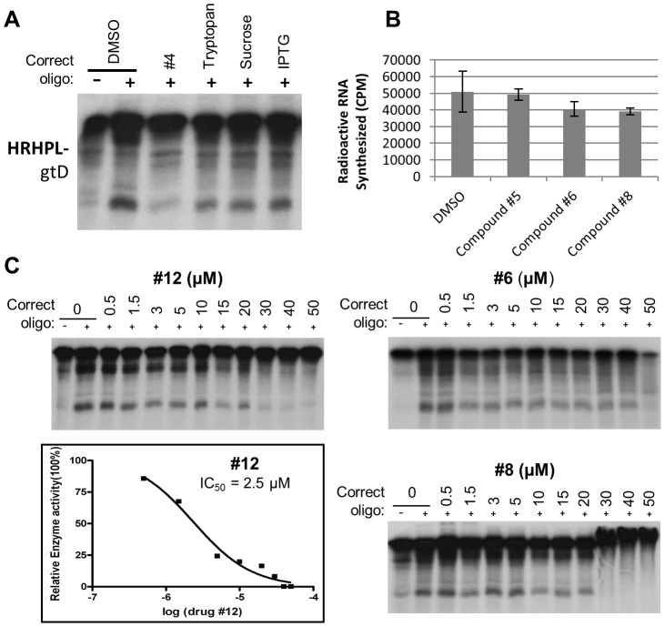 Specificity of anti-HBV RNAseH compounds. A. Inhibition of HBV genotype D RNAseH by irrelevant compounds at 10 µM in the oligonucleotide-directed RNAseH assay. Compound #4 was employed as an example HBV RNAseH inhibitor. B. Anti-HBV RNAseH inhibitors do not significantly inhibit the HCV RNA polymerase. The ability of compounds #5, 6 and 8 to inhibit production of poly-G by the HCV RNA-directed RNA polymerase was measured in a primed homopolymeric RNA synthesis assay [82] . The compounds were employed at 10 µM. DMSO, vehicle control. C. Dose-responsiveness of HBV RNAseH inhibition. The effects of compounds #6, 8, and 12 on the RNAseH activity of HRHPL (genotype D) were measured at concentrations ranging from 0.5 to 50 µM. The dose-response profile is plotted for compound #12.