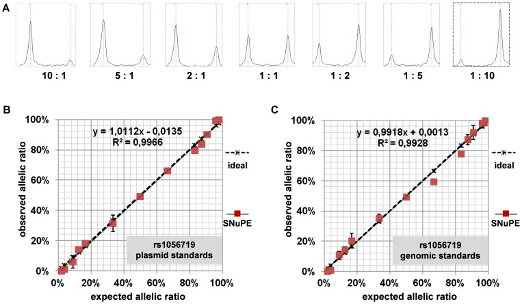 Characterization of a multiplexed MassARRAY-based method for detection of allele-specific expression (ASE). (A) Representative MassARRAY spectra of molecular standards of DAPK1 exonic SNP rs1056719 (G/A). Each spectrum represents the mass range from 5390 to 5500 Da displaying SNP rs1056719 out of a multiplexed assay. Left peaks represent the G allele, right peaks represent the A allele. Copy number ratios between standard plasmids containing G and A alleles are given below each spectrum. (B) Standard curves for a plasmid-based standard displaying allelic ratios from 1∶50 to 50∶1 and correlation with idealized ratio (SNP rs1056719). The correlation was calculated using the Pearson correlation coefficient. (C) Standard curves for a genomic DNA based standard displaying allelic ratios from 1∶50 to 50∶1 and correlation with the idealized ratio (SNP rs1056719).