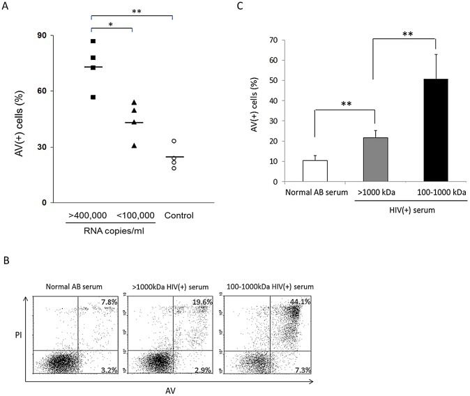 CD40L-mediated apoptosis of HIV(+) serum-pulsed DC is proportional to viral loads and predominantly induced by the 100–1000 kDa fraction. ( A ) moDC were treated with HIV-1(+) sera with viral copy numbers > 400,000/ml or
