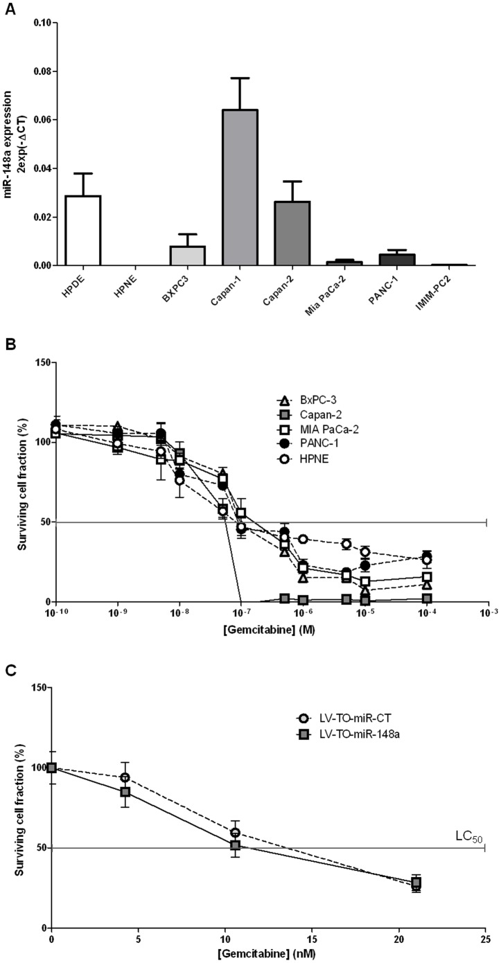 Gemcitabine sensitivity of PDAC cell lines over-expressing miR-148a. ( A ) miR-148a endogenous expression level was measured by qRT-PCR in several PDAC cell lines and in hPDE and hPNE normal pancreatic cell lines. ( B ) Cell sensitivity to gemcitabine was measured after a 72 h-treatment in several PDAC cell lines and in normal hPNE pancreatic cells. Surviving cell fraction represents the number of treated cells during 72 h compared to the number of untreated cells (represented as 100%). The lethal concentration 50 (LC50) represents the dose of gemcitabine sufficient to obtain 50% of surviving cells compared to untreated cells. The results are the mean of three independent experiments (±SEM). ( C ) Cell sensitivity to gemcitabine was measured in MIA PaCa-2 cells stably over-expressing miR-148a (LV-TO-miR-148a) or a control miR (LV-TO-miR-CT) to gemcitabine in presence of doxycycline after a 72 h-treatment. Surviving cell fraction represents the number of treated cells during 72 h compared to the number of untreated cells (represented as 100%). The results are the mean of three independent experiments (±SEM).