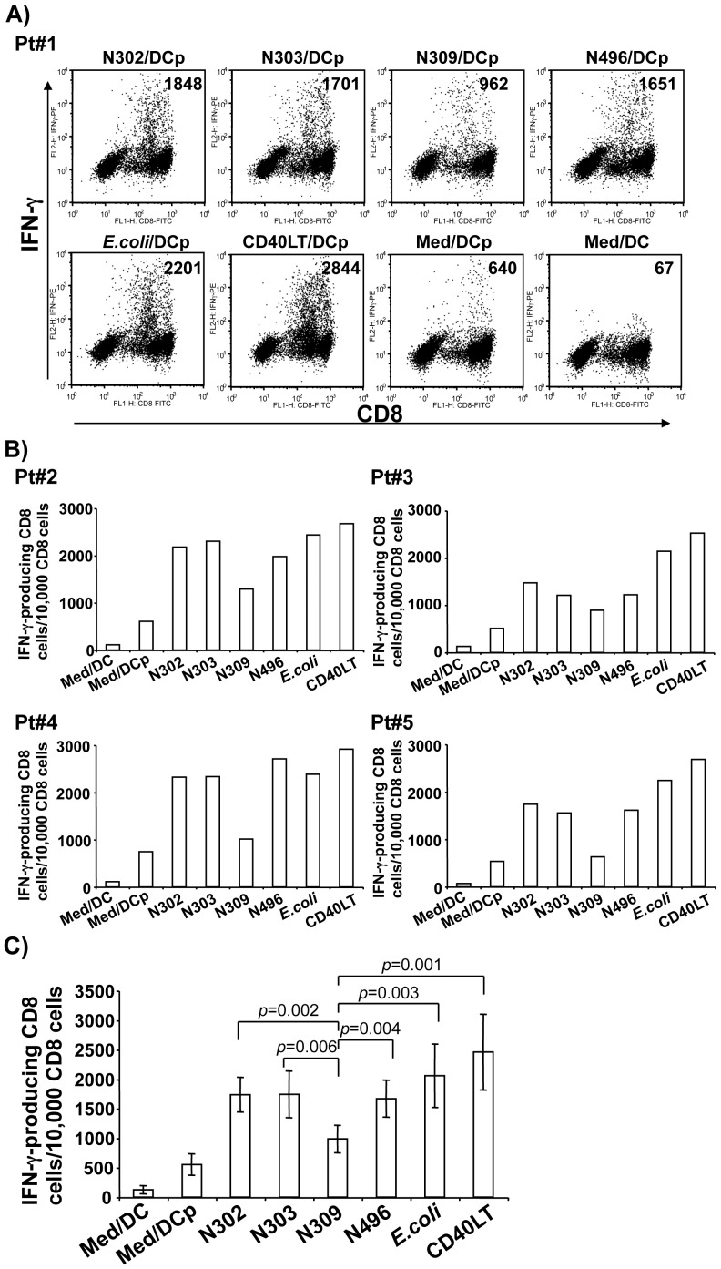 Effects of N. gonorrhoeae infection on HIV-1-specific CTL memory response. PBMCs from HIV-1-seropositive individuals were cocultured with HLA-restricted peptide-pulsed or nonpulsed autologous MDDCs that were previously infected for 72 h with N. gonorrhoeae N302, N303, N309, or N496, or E.coli DH5α, or CD40LT treatment at 1 µg/ml. On day 10 of coculture, HIV-1-specific CTL activity was assayed by intracellular staining and flow cytometric analysis of IFN-γ-producing CD8 + T cells. A) representative intracellular IFN-γ data obtained from Pt#1 of HIV-1 seropositive individual are shown. Cells were gated for CD3 and CD8 to enumerate IFN-γ-producing CD8 + T cells only. B) Summary data of intracellular IFN-γ production in CD8 + T cells from Pt#2 – Pt#5 are graphically depicted. C) Summary data of IFN-γ-producing CD8 + T cells from all patients tested are graphically depicted. The experiments from Pt#1 and Pt#2 were repeated with similar results. Statistical comparisons of data pooled from five participants were performed between Opa CEA -expressing N309 and other gonococci strains, E.coli DH5α, or CD40LT treatment: N309 vs N302, p