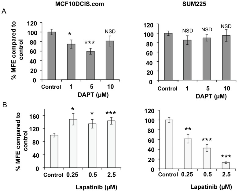 Notch and ErbB1/2 receptor inhibition reduces mammosphere forming efficiency. MCF10DCIS.com and SUM-225 cells were treated with DAPT 1–10 µM (A) or Lapatinib 0.25–2.5 µM (B) in mammosphere culture. Mammosphere-forming efficiency (MFE) was calculated by dividing the number of mammospheres formed by the original number of cells seeded and is expressed as a percentage compared to control. Mean±standard error n = 3, Man Witney U test, two-tailed, * p