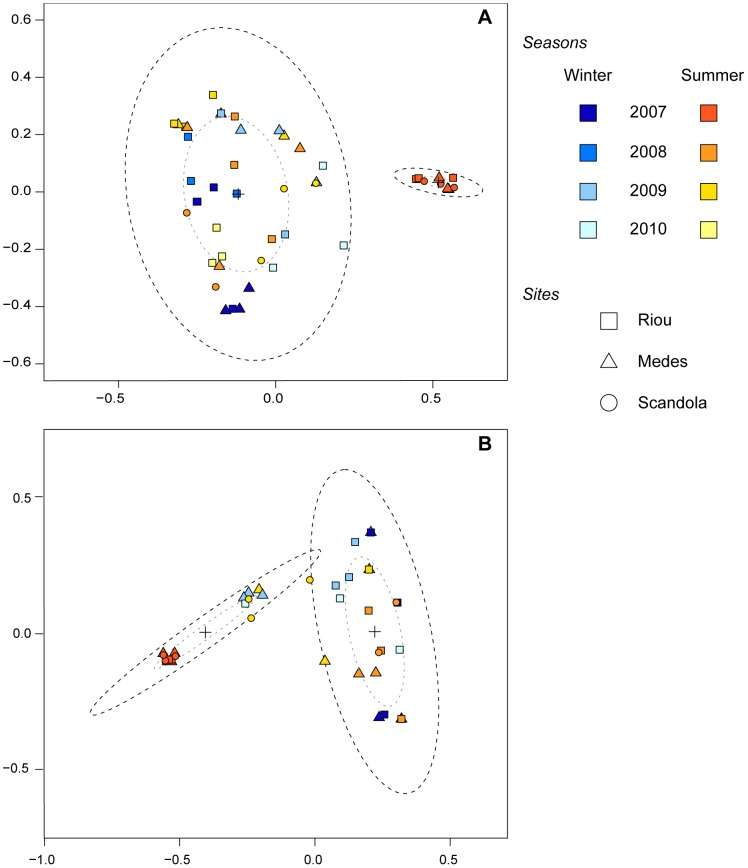 MDS ordination plot of P. clavata bacterial communities. 2-D scatter plots of T-RFLP profiles from P. clavata colonies sampled at 3 sites in winter and summer from 2007 to 2010 are based on the Dice similarity matrix for the T-RFLP data retrieved from the amplified bacterial 16S rDNA digested with Cfo I (A) and Msp I (B). Each symbol represents the bacterial community of an individual sample from Riou (square), Medes (triangle) or Scandola (circle), and the colors correspond to different sampling seasons. Sample clusters are based on coordinates determined with the k-means method. Dotted ellipses contain 50% (grey dots) or 95% (dark dots) of the points that contribute to the cluster. The centers of the confidence ellipses are identified with a cross.