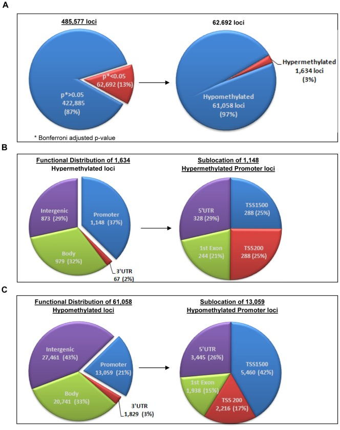 Genome-wide Methylation450 BeadChip DNA methylation portrait. A. Left: Significant differential methylation (DM) among the 485,577 CpG loci with a cut-off as Bonferroni adjusted p-value