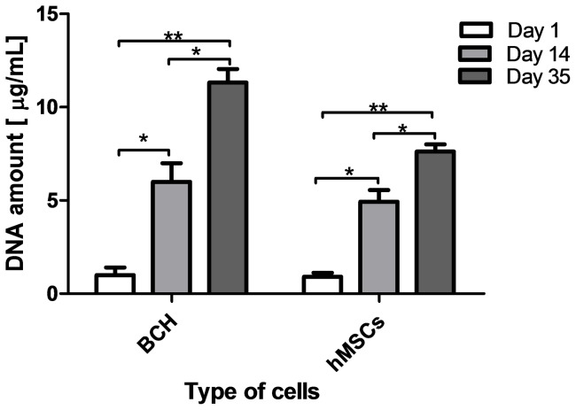 DNA assay on the scaffolds seeded with BCH and hMSCs in differentiation medium. Significant differences between each cell type at different time points were found for p