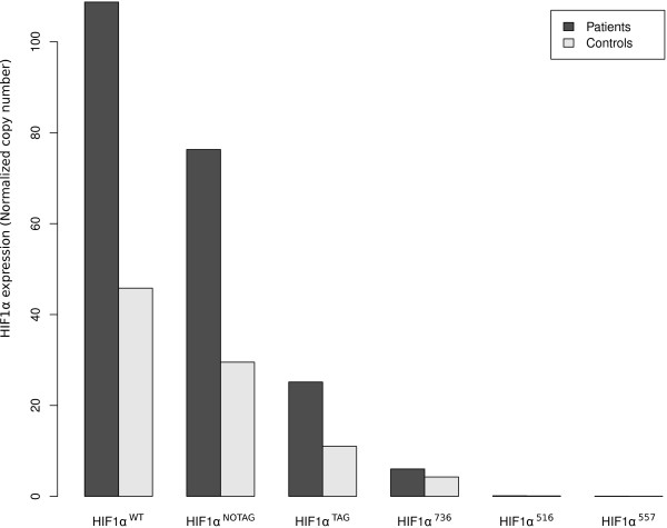 Expression of different HIF1α variants in shock patients (black bars) and controls (grey bars) .