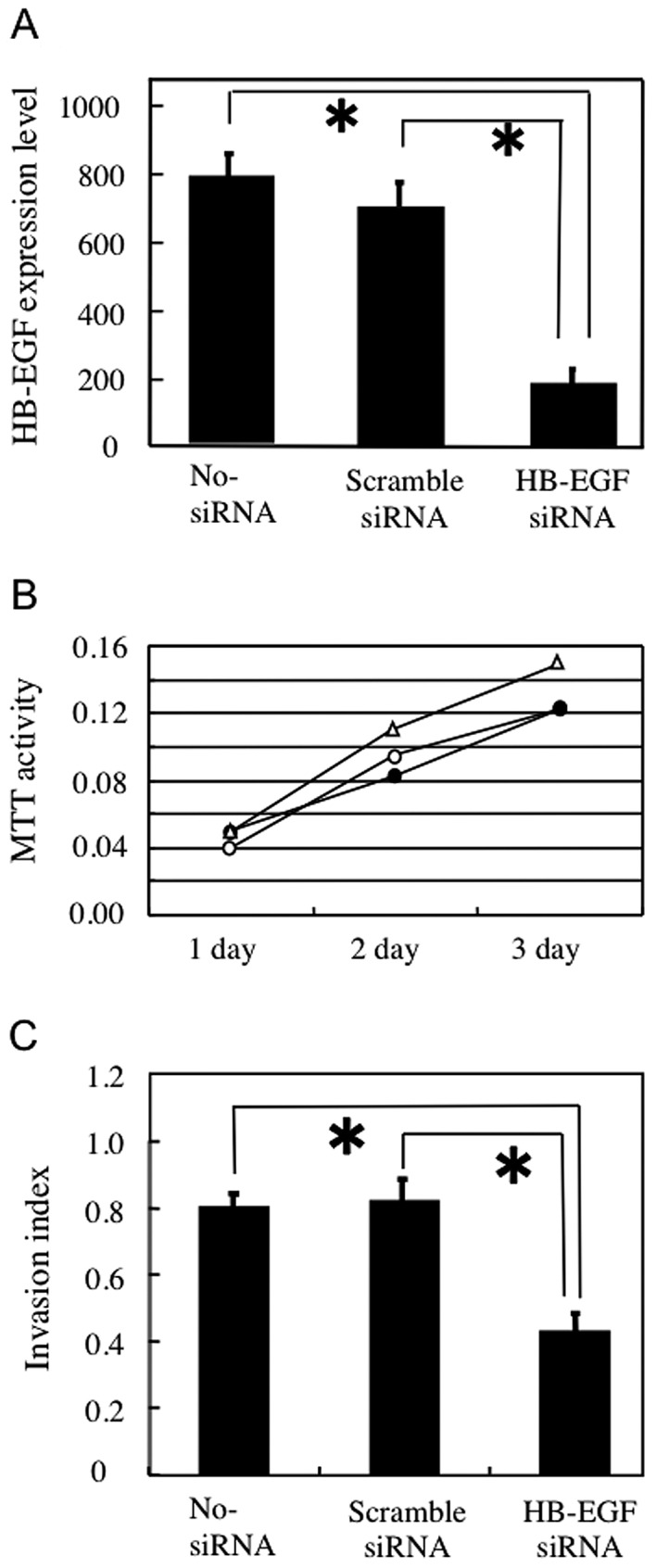 Knockdown of heparin-binding epidermal growth factor-like growth factor (HB-EGF) affects invasion activity in HSC3 cells. (A) Expression of HB-EGF mRNA in HSC3 cells treated with siRNAs was determined by real-time RT-PCR. The amount of HB-EGF mRNA was significantly reduced in HB-EGF siRNA-treated HSC3 cells compared with that in control no-siRNA or scrambled-siRNA-treated HSC3 cells. (B) Effect of HB-EGF on HSC3 cell proliferation. The MTT assay showed similar proliferation rates among cells treated with HB-EGF siRNA (closed circle), no-siRNA (triangle), and scrambled-siRNA (open circle). (C) Invasion activity of HB-EGF siRNA-transfected HSC3 cells as determined by the Matrigel invasion assay. The invasion index represents the ratio of cells migrating through a Matrigel-coated membrane/cells migrating through a control non-coated membrane. No-siRNA and scrambled-siRNA transfectants were highly invasive, whereas the invasiveness of HB-EGF siRNA-transfected HSC3 cells was significantly lower.