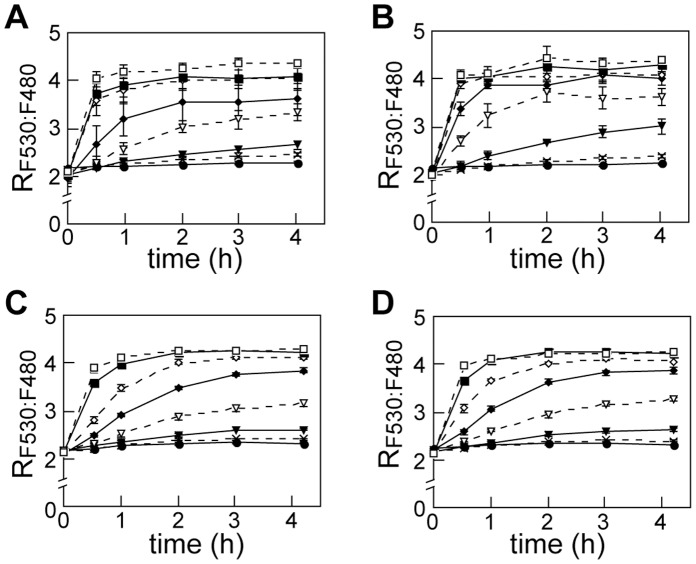 Effect of over-expression and knockdown of Hs MoT2/MFSD5 in molybdate uptake rate. A , Time course of R F530:F480 in control cells (for Panel B). HEK-293T was co-transfected with MolyProbe and mock vector by the polyethyleneimine method. Fluorescence was measured after addition of molybdate, and R F530:F480 calculated. B , Time course of Hs MoT2/MFSD5 over-expressing cells. mRNA level of Hs MoT2/MFSD5 was about sixty-fold compared to the control cell. C , Time course of R F530:F480 in control cells (for Panel D) transfected with MolyProbe by X-tremeGENE siRNA reagent. D , Time course of R F530:F480 in Hs MoT2/MFSD5 knockdown cells. mRNA level of Hs MoT2/MFSD5 was 11–35% compared to the control cell. Concentrations of molybdate in working medium are follows: 0 µM (closed circle), 0.1 µM (cross), 0.3 µM (closed triangle), 1 µM (open triangle), 3 µM (closed diamond), 10 µM (open diamond), 30 µM (closed square), 100 µM (open square). Averages and SDs from triplicate samples are shown. n = 3.