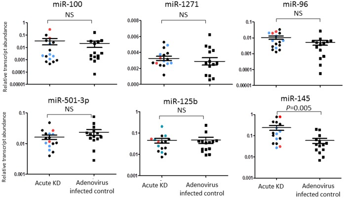 <t>qRT-PCR</t> validation of miRs differentially expressed in whole blood samples from acute KD and adenovirus-infected patients. qRT-PCR confirmed differential expression of miR-145 in an independent cohort of 16 acute KD subjects and 14 acute adenovirus-infected controls. Red dot: subjects with coronary artery aneurysm; Blue dot: subjects with dilated coronary arteries; Black dot: subjects with normal coronary arteries. The Mann Whitney test was used to obtain p -values. NS = not significant.