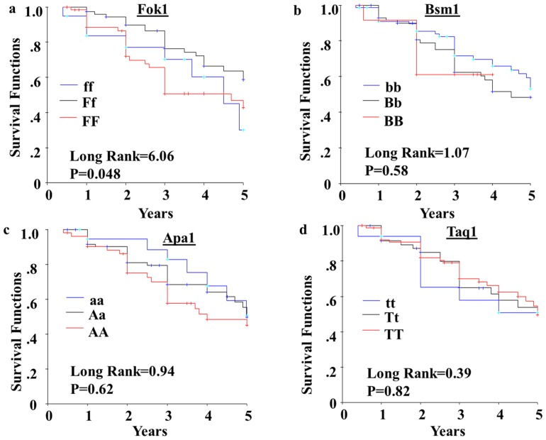 Five-year disease free survival (DFS) of breast cancer patients in relation to VDR gene polymorphisms. Kaplan-Meier survival curves were used to compare the 5-year DFS between the VDR gene polymorphisms in (a) VDR-FokI, (b) VDR-BsmI, (c) VDR-ApaI, and (d) VDR-TaqI. The differences between the curves were estimated by log-rank test, where P