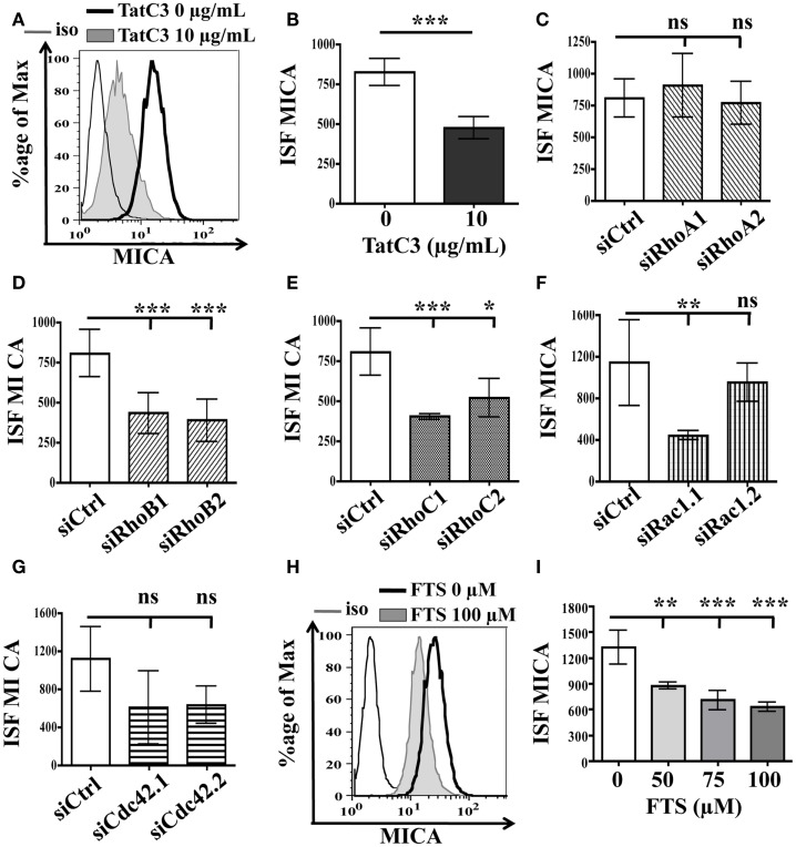 "Inhibition of Rho and Ras GTPases proteins do not induce MICA membrane overexpression . LB1319-MEL cells were untreated or treated with TatC3 exoenzyme (TatC3) 10 μg/mL for 24 h (A,B) . LB1319-MEL cells were transfected with control siRNA (siCtrl) (C–G) , two RhoA-specific siRNAs (siRhoA1, siRhoA2) (C) , two RhoB-specific siRNAs (siRhoB1, siRhoB2) (D) , two RhoC-specific siRNAs (siRhoC1, siRhoC2) (E) , two Rac1-specific siRNAs (siRac1.1, siRac1.2) (F) , or two Cdc42-specific siRNAs (siCdc42.1, siCdc42.2) (G) . LB1319-MEL cells were treated or not with a Ras inhibitor, FTS, 50–100 μM for 24 h (H,I) . MICA membrane expression was analyzed by flow cytometry 72 h after transfection or 24 h after treatment. Representative illustrations of untreated cells (black) and of treated cells (filled in gray) with Tat-C3 exoenzyme (A) or FTS (H) are shown. To evaluate membrane antigen expression, the index of specific fluorescence (ISF) was calculated as indicated in the Section ""Materials and Methods."" Results are expressed as mean ± SD (error bars, n = 3 experiments). * P"