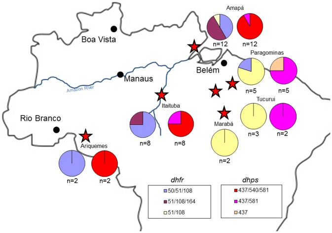 Geographic distribution of dhfr and dhps genotypes, 1980s. This figure shows the sites examined, noted with red stars, during the 1980s for dhfr and dhps genotypes. For each gene and site, there are two pie charts. The color coding for the alleles appears in the bottom of the map. Note that alleles with fewer mutations appear in the eastern portion of the country, while the 51I/108N/164L allele appears at a central and northeastern site.
