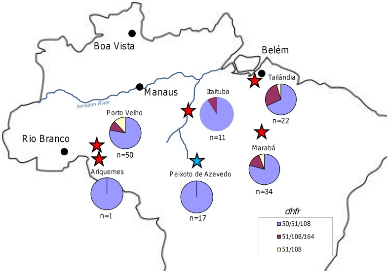 Geographic distribution of <t>dhfr</t> and <t>dhps</t> genotypes, 1990s. This figure shows the sites examined during the 1990s, noted with red stars, for dhfr . All sites were fixed for the 437G/540E/581G dhps allele, with the exception of one isolate in Itaituba carrying 437G/581G, and therefore these pie charts were omitted The color coding for dhfr appears in the bottom of the map. The data provided for Peixoto de Azevedo, noted by the blue star came from the work of others [45] .