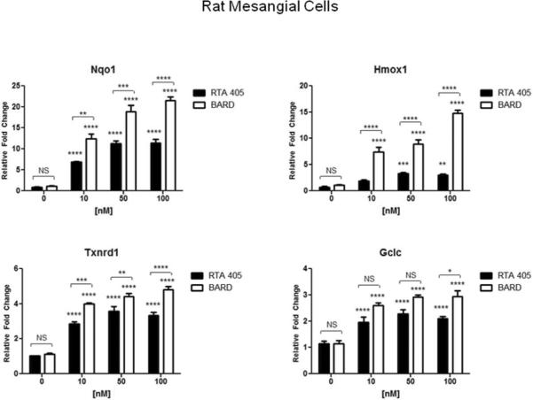 Bardoxolone methyl and RTA 405 induced expression of Nrf2 target genes in cultured MCs Human MCs (A) and rat mesangial cells (B) were treated with the indicated concentrations of bardoxolone methyl or RTA 405 for 16 hours. Cells were harvested for RNA isolation and cDNA synthesis, and Nrf2 target gene expression was evaluated by real-time PCR. Fold-change values (relative to DMSO-treated samples) are the average of three independent experiments. Nqo1: NAD(P)H dehydrogenase quinone 1; Hmox1: heme oxygenase 1; Gclc: glutamate-cysteine ligase, catalytic subunit; Txnrd1: thioredoxin reductase 1. Error bars represent standard deviation.error of the mean. * P