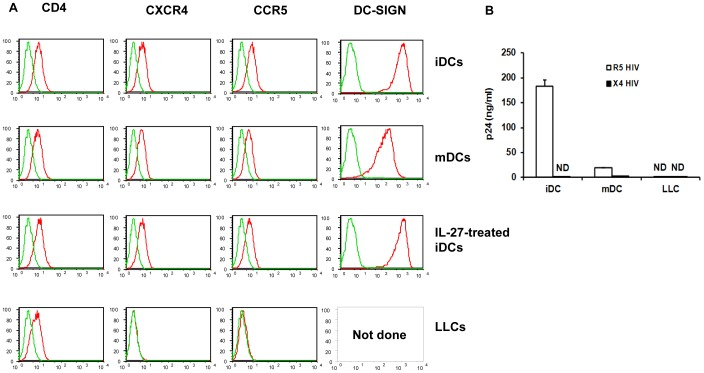 HIV-1 co-receptor expression in DCs and HIV-1 infection rates in DC subsets. A: The expression level of CD4, CXCR4 and CCR5 was measured using flow cytometry in iDCs, mDCs, LLC and IL-27-treated iDCs. DC-SIGN was also measured but only in iDCs, mDCs and IL-27 treated iDCs. The red color in the plots indicates specific antibody staining whilst green represents the isotype control. B: iDCs, mDCs and LLCs were infected with either HIV-1 Ba-L or HIV-1 NL4.3 as described in the Materials and Methods . HIV-1 replication was measured using HIV-1 p24 antigen capture kit as described in the Materials and Methods . These graphs are representative data from a single donor from three independent experiments.