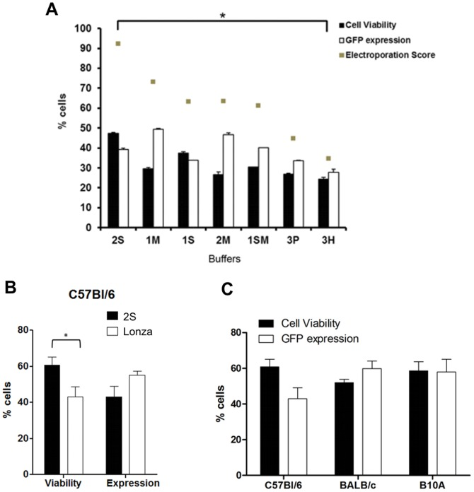 Efficiency of murine T lymphocyte electroporation is dependent on different buffer and mouse strain. ( A ) Total lymphocytes from lymph nodes of C57BL/6 mice were isolated and electroporated using in house buffers and 4 µg of <t>pT2-GFP</t> plasmid. Cell viability and GFP expression were analyzed after 24 h by flow cytometry. Electroporation scores were determined as described in materials and methods . Statistical analysis was performed using One Way ANOVA and Tukey post test. P