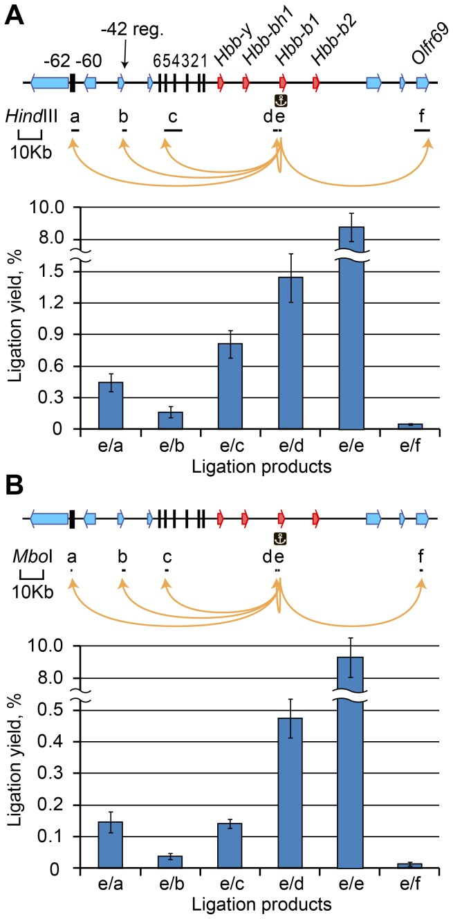 Yield of ligation products for different fragments of the mouse beta-globin gene domain. (A) The results for Hind III-digested fragments. (B) The results for Mbo I-digested fragments. Above each graph, a map of the domain is shown (beta-globin genes, red arrows; olfactory receptor genes, blue arrows; DNase I hypersensitive sites, black vertical lines). Black horizontal lines below the map show the positions and sizes of the analyzed restriction fragments. The individual fragments are designated by lowcase letters. An anchor symbol indicates the anchor restriction fragment. The ligation yield was calculated using the equation presented in Figure 2C . The ligation products are named according to the fragment designations; e/e–self-ligated product. The error bars represent the SEM of three independent experiments.