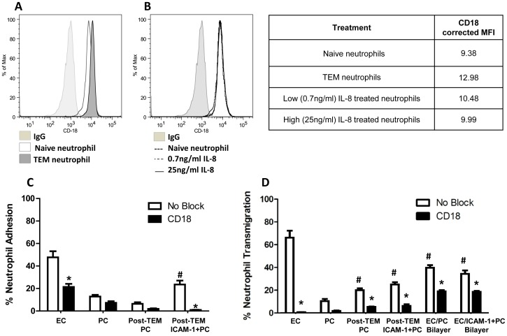 CD18-dependent post-transendothelial migration. (A) CD18 (β 2 integrin) expression on naïve and transendothelial migrated (TEM) neutrophils (across 4 hr IL-1β activated EC monolayers) and (B) naive 0.7 ng/ml IL-8 and 25 ng/ml IL-8 stimulated neutrophils assessed by flow cytometry. Table 1 . Corrected mean fluorescent intensity (MFI) reflect CD18 expression from flow cytometry. (C) Neutrophil adhesion on EC, PC, post-TEM PC, or post-TEM ICAM-1+PC monolayers following 4 hr IL-1β activation. Freshly isolated neutrophils were pre-incubated with anti-CD18 antibodies and seeded onto the monolayers in Sykes-Moore chambers and allowed to adhere prior to counting. Bars represent average neutrophil adhesion ± SEM. *P