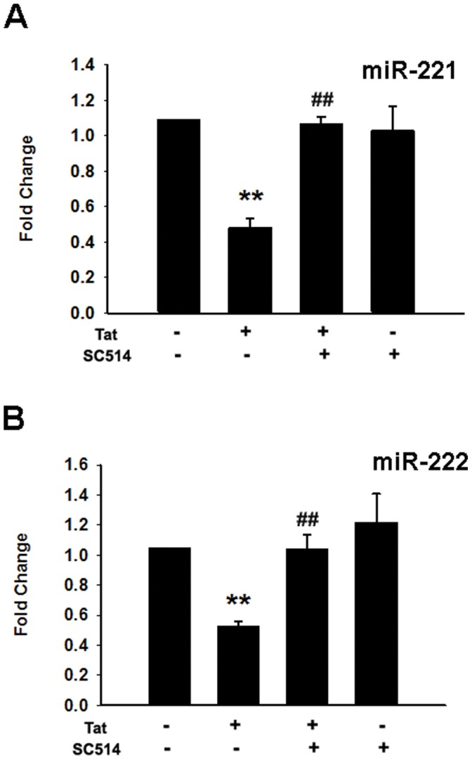 Tat-mediated suppression of miR-221/-222 is NF-κB-dependent. Pre-treatment of HUVECs with the IKK2/NF-κB inhibitor SC514 (10 µM) abrogated Tat-mediated down-regulation of miR-221/-222 expression. Total <t>RNA</t> was isolated, and the expression of miR-221/-222 was quantified by real-time <t>RT-PCR.</t> RNU6B (U6) was used as the control. All the data are presented as mean ± SD of three independent experiments. **p