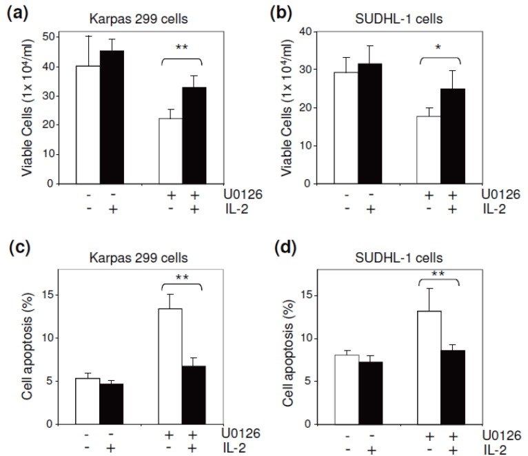 IL-2 regulated ALCL cell growth and apoptosis. To downregulate the ERK1/2 pathway, cultured Karpas 299 (a) and SUDHL-1 cells (b) were exposed to U0126 (5 μM) in the presence or absence of IL-2 (40 units/ml) as indicated. After culture for 36 hours, the number of viable cells in each condition was counted. The presence of exogenous IL-2 significantly reversed the U0126-induced growth arrest of ALCL cells. The treated cells were also stained with FITC-conjugated annexin V, and the apoptotic rate (%) was determined by flow cytometry. The presence of exogenous IL-2 almost completely suppressed the U0126-induced apoptosis of Karpas 299 (c) and SUDHL-1 cells (d). * p