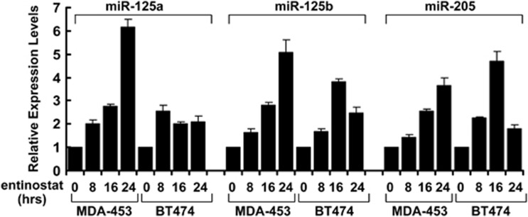 Entinostat upregulates the expression levels of miR-125a, miR-125b, and miR-205 in erbB2-overexpressing breast cancer cells. MDA-MB-453 (MDA-453) and BT474 cells untreated or treated with entinostat (0.5 and 2 μ mol/l, respectively) for 8, 16, 24 h were collected and subjected to total RNA extraction, inclusive of the small RNA fraction. The expression levels of miR-125a, miR-125b, and miR-205 were measured by qRT-PCR using TaqMan miRNA assays. All results were normalized with the internal control RNU6B. Bars, S.D. The data are representative of three independent experiments