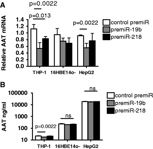 The effects of pre-miR-19b and pre-miR-218 overexpression on ( A ) AAT mRNA and ( B ) AAT protein expression in THP-1, 16HBE14o− and HepG2. Cells (1 × 10 5 in triplicate) were transfected with 30 nM negative control pre-miR (control pre-miR) or synthetic pre-miRs as indicated. Twenty-four hours post-transfection RNA was isolated and used in qRT-PCR reactions with AAT and GAPDH primers. Relative AAT mRNA expression for each cell type was quantified using the 2 −ΔΔCt method. Thereafter, 24 and 48 h culture supernatants were assayed by ELISA to quantify AAT protein expression. Data presented in y -logarithmic axis for B. Assays were performed in triplicate ( n = 3). Data were compared by t -test for negative control pre-miR versus pre-miRs.