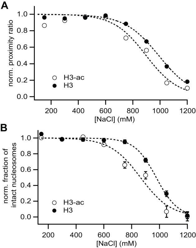 smFRET results on nucleosome stability are consistent to μpsFRET data. ( A ) Average proximity ratio calculated from all photons from double-labeled nucleosomes as a function of salt concentration. Photons from the donor and transfer channel were summed for all detected molecules, except donor-only and acceptor-only species. ( B ) Salt dependence of the fraction of intact nucleosomes in smFRET histograms from Fig. 5. For each histogram, the donor-only and acceptor-only population was excluded from the analysis. The relative fraction of FRET-active molecules (0.25