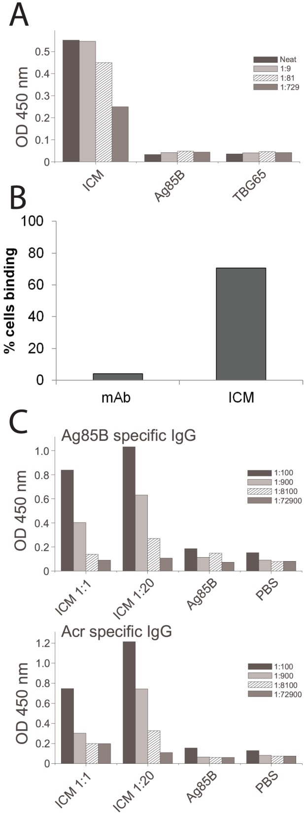 Functional evaluation of ICM in vitro and in vivo. A) Complement C1q binding ELISA; ICM were used at the 1∶20 antibody-antigen ratio and the neat sample contained 5 µg/m total protein (ICM) or the equivalent amount for individual components; each bar represents mean value from triplicate assays and the patterns indicate serial dilutions. B) Analysis of binding of ICM to spleen-derived APCs by flow cytometry; shown are the proportions of cells (out of 10,000 counted) that bound either mAb alone or ICM. C) Serum anti-Ag85B <t>IgG</t> responses from mice immunised with an equimolar (1∶1) or a low (1∶20) antibody-antigen ratio, twice at the base of the tail, at 3-week intervals. Mice were culled 3 weeks after the final immunisation. Shown are the mean values and corresponding serial dilutions from a pilot experiment (n = 3 mice).
