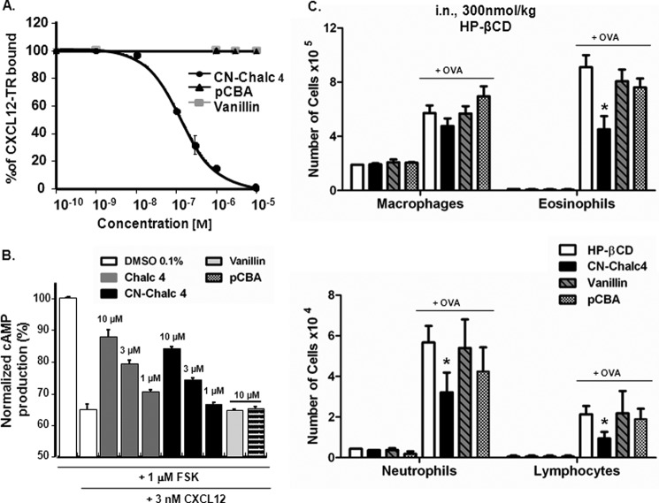 CN-chalcone 4 degradation products are inactive. A , CN-chalcone 4 ( CN-Chalc 4 ) degradation products (up to 10 μ m ) do not inhibit CXCL12-TR binding to EGFP-CXCR4 detected by FRET as in Fig. 1 A . Each data point represents the mean ± S.D. of three independent experiments performed in triplicates. B , CN-chalcone 4, but not its degradation products, dose-dependently inhibits CXCL12 action on forskolin-evoked cAMP responses in HEK EGFP-CXCR4 cells. The first two bars report the maximal production of cAMP (%) triggered by 1 μ m forskolin and its inhibition by 3 n m CXCL12. The following bars show that chalcone 4 ( Chalc 4 ) and CN-chalcone 4 (1, 3, and 10 μ m ), but not vanillin or pCBA (10 μ m ), inhibit the CXCL12 effect on cAMP production. Each bar represents the mean ± S.D. ( error bars ) of three independent experiments performed in triplicates. C , topical treatment with chalcone 4, CN-chalcone 4, vanillin, and pCBA in the 8-day mouse model of hypereosinophilia. BALB/c mice were immunized and challenged with OVA or saline. Treatments (300 nmol/kg) or HP-βCD 10% (vehicle), were administered intranasally 2 h before each challenge. Absolute numbers of macrophages, eosinophils, neutrophils, and lymphocytes in BAL are shown. Bars show means, and error bars show S.E. values ( n = 6/group). *, p ≤ 0.05 in comparison with the saline-treated OVA group.
