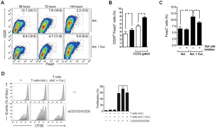 <t>TGF-β1</t> is associated with curcumin-mediated generation of regulatory T cells at late phase. CD4 + T cells were cultured in the presence of anti-CD2/CD3/CD28 antibody-coated beads only (1∶10 for bead-to-cell ratio) or with 2 µg/mL of curcumin (Cur.) for 3 days, and then transferred to a new cell culture plate and incubated with a fresh media for an additional 3 days. (A) Cells were collected at the indicated time points and labeled with anti-CD25 and anti-Foxp3 antibodies. The cells were then washed and analyzed for CD25 and Foxp3 expression by flow cytometry. The numbers in each panel and the numbers in blankets indicate the percentage of CD25 hi Foxp3 + cells in total and among CD25 + cells, respectively. (B) After 6 days of culture, cells were collected and percentage of CD25 hi Foxp3 + cells in total and among CD25 + cells was determined by flow cytometric analysis. The empty and filled bars indicate cells treated with beads only and cells treated with both beads and curcumin, respectively. (C) A <t>TGF-βRI</t> kinase inhibitor (5 µg/mL) was added after 3 days of culture. The percentage of Foxp3 + cells was determined by flow cytometry. (D) After 3 days of culture, the cells were washed with PBS and then co-cultured with CFSE-labeled autologous CD4 + T cells with or without CD2/CD3/CD28 stimulation for 3 days. The cell proliferation was determined by flow cytometric analysis. (B, C and D) Data are presented as the mean ± SD. * P