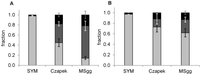 Fractions of polysaccharides (▪), proteins (▪) and nucleic acids (▪) in EPS isolated from biofilms (A) and corresponding spent medium below the biofilm (B) grown in three different media. SYM, Czapek, MSgg. The error bars represent standard deviation of the mean (n≥4).